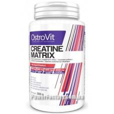 Creatine Matrix 300 грамм