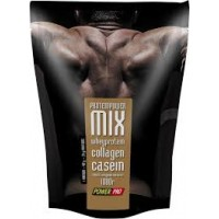 ProteinPower MIX (1000 гр.)