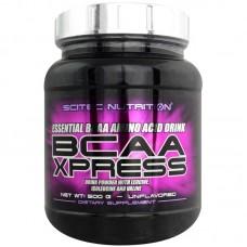 BCAA Xpress 500 грамм